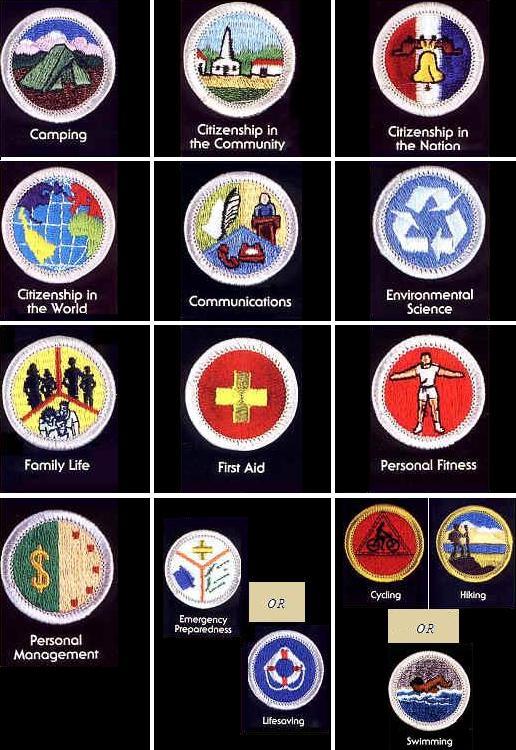 94 best Boy Scout Merit Badge images on Pinterest | Dental ...