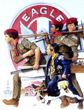 eagle scout project handbook